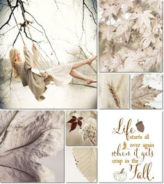 ❧ Collages de photos ❧ moodboard fall by AT