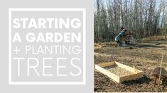 Always dreamed of starting a garden? Me too! Which is why it was one of the first projects we tackled after we moved into our sustainable home - once the snow finally melted, of course. Want to see what we were up to this past spring? Check us out building planters, starting a garden from scratch, doing some landscaping - and planting trees too! #startingagarden #plantingtrees #sustainableliving Sustainable Design, Sustainable Living, Building Raised Beds, Bohemian Bedroom Decor, Starting A Garden, Garden Buildings, In The Tree, Hanging Planters, Trees To Plant