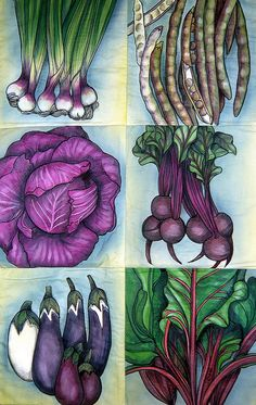 Purple Vegetable by Sara Drower Fabric Painting, Fabric Art, Jordan Painting, Purple Vegetables, Food Drawing, Fruit Art, Watercolor Cards, Art Techniques, Botanical Prints
