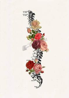 Springtime Roses Spine Anatomical Wall art is part of Cute Dragon drawings Trains - seasideprints Arte Com Grey's Anatomy, Human Anatomy Art, Anatomy Study, Tattoo Son, Medical Art, Medical Drawings, Doctor Gifts, Art Studies, Collage Art