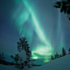 I've mostly seen green aurora borealis. Cool Photos, Beautiful Pictures, Amazing Photos, Amazing Places, Places To Travel, Places To See, Lapland Finland, Nordic Lights, See The Northern Lights