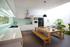 Küche Pflanzen pflegen Tipps Boden Luftfeuchtigkeit