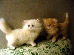 Dollhouse Miniature Persian Kittens *Handsculpted* (so sweet!)