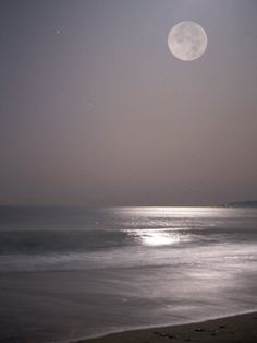 Full Moon by Mitch Diamond. Print from Art.com, $29.99