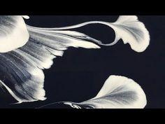 "Acrylic Fluid Pouring.Hair Dryer Effect On Vibrant Colours.""Phoenix"" - YouTube"
