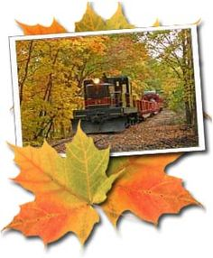 Fall Foliage on the Catskill Mountain Railroad (1.5 hrs from Yonkers in the Hudson Valley)