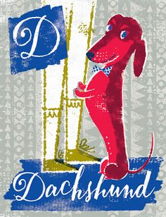 D is for dachshund | illustration by debra ziss: Dogs A-Z (to be continued...)