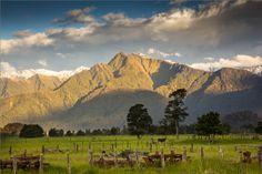 New Zealand - Franz Josef Glacier by Frapsoft Photography on 500px