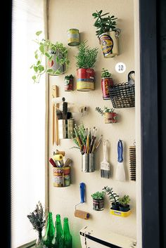 Cans as wall planters - Dindi Hojah