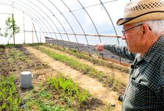 Donald Daugs talks about his goji berry plants he grows in Young Ward, Utah. (Photo by John Zsiray)
