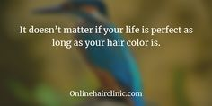 It doesn't matter if your life is perfect as long as your hair color is. Hair Quotes, Fashion Quotes, Be Perfect, Quotations, Your Hair, Hair Color, Hair Styles, Life, Qoutes