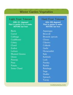 Tips For Composting winter garden. Winter Garden Vegetables Chart for Winter Vegetables in a cold frame. Light Frost Tolerant deg) Plant in winter garden 2 to 4 weeks BEFORE last frost . Permaculture, Organic Gardening, Gardening Tips, Gardening Vegetables, Organic Farming, Vegetable Chart, Winter Greenhouse, Diy Greenhouse, Flora