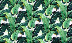 Banana leaf wallpaper design 'Martinique' for the Beverly Hills ... - Wallpaper…