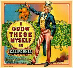 I Grow These Myself Uncle Sam Orange Citrus Crate Label Art Print