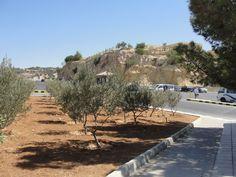 #magiaswiat #podróż #zwiedzanie #jordania #blog #azja  #jerash #twierdza #kosciol #amman #miasto #zabytki #muzeum #katedra #rzymskie #ruiny #stadion #madaba #goranebo #betania #jordan #morzemartwe #petra #al-kerak #pustynia Petra, Sidewalk, Country Roads, Blog, Side Walkway, Walkway, Blogging, Walkways, Pavement