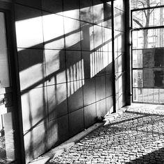 shadows. gate to the garage