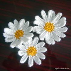 Crochet daisy, free pattern.