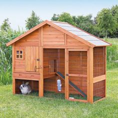 Large Rabbit Cages on Hayneedle - Large Bunny Hutches