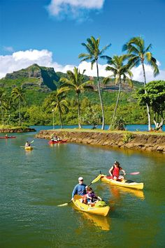 Kayaking on the Wailua river in Kauai. I will be doing this in about 5 months
