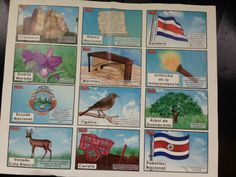 Costa Rica National symbols. Follow us on Facebook at  https://www.facebook.com/LivingInCostaRica