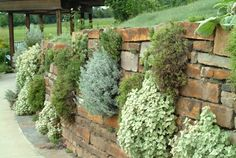 Stacked stone garden wall.