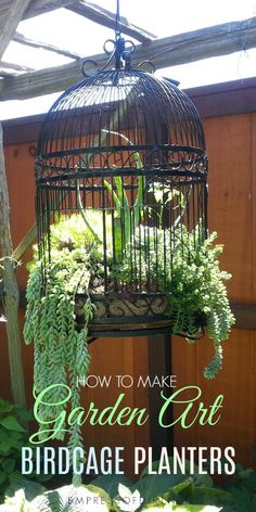 Birdcage planters are a favorite with creative gardeners. These tips share ideas for setting up a new or upcycled birdcage as a planter for succulents or annuals. #birdcage #gardenart #flowerplanter #gardening #repurposed #upcycle #empressofdirt #succulents