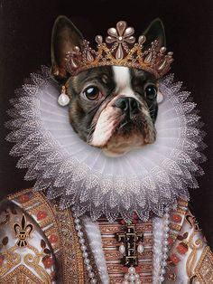 Get a Renaissance custom pet portrait of your best buddy or give it as a gift! Portraits From Photos, Dog Portraits, Portrait Renaissance, Dog Canvas Painting, Photo Portrait, Pet Clothes, Dog Art, Fur Babies, Drawing