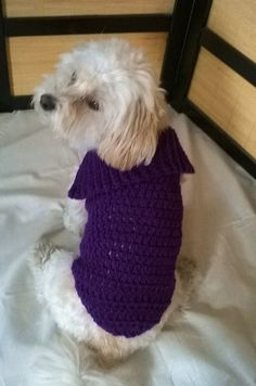 Hey, I found this really awesome Etsy listing at https://www.etsy.com/ca/listing/264567279/purple-dog-sweater-small-dog-sweater