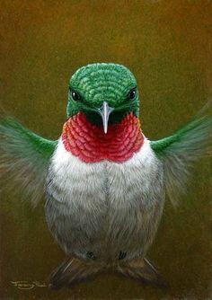 HUMMINGBIRD BY JEREMY PAUL