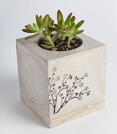 Concrete Planter Cherry Blossom <3 Details on product can be viewed by clicking the image