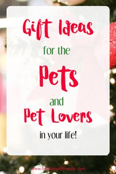 Looking for gifts for the doggie lovers out there? How about the pups themselves? Check out some great homemade dog treats, cute dog tags, even a dog booster seat your best bud will love!