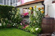 Sustainable garden ideas for a green and glorious eco friendly garden, that's easy on the planet, easy on your pocket and wildlife friendly. Eco Garden, Garden Ideas, Painted Shed, Building Raised Beds, Prayer Garden, Miniature Orchids, Bottle Garden, Terrarium Plants, Garden Painting