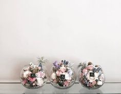 . . #유리볼 #플라워유리볼 . . 오늘 원데이 늠나 잘하심 💕 시상 귀여운 세마리 뿅뿅뿅 💓💓💓 .  #Order 👉🏻Katalk ID vaness52 WeChat ID vaness-flower E-mail vanessflower@naver.com 강남구 신사동 515-2 📞02-545-6813 . #vanessflower #flower #florist #flowershop #handtied #flowerlesson #flowerclass #플라워 #바네스플라워 #플라워카페 #플로리스트 #꽃다발 #부케 #원데이클래스 #플로리스트학원 #신사동꽃집 #가로수길꽃집 #플라워레슨 #플라워아카데미 #꽃수업 #꽃주문 #花 #花艺师 #花卉研究者 #花店 #花艺