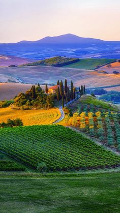 Everybody wants to visit the Toscana, Italy. The Tuscany boasts a proud heritage. Landscape Photos, Landscape Paintings, Landscape Photography, Nature Photography, Street Photography, Wedding Photography, Wonderful Places, Beautiful Places, Tuscany Landscape