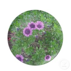 Purple Asters Plate click TWICE to purchase