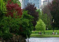Boston entre las ciudades más ecológicas de Estados Unidos. #medioambiente