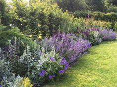 Landscaping Ideas, Backyard Ideas, Garden Ideas, Love Garden, Dream Garden, Outdoor Spaces, Outdoor Living, Garden Design Images, The Great Outdoors