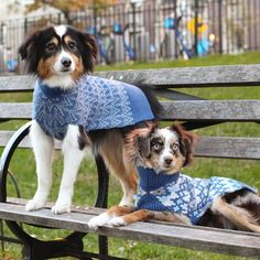 Make sure your pup wins best dressed at the dog park by shopping at these fabulous and cool designer dog brands.