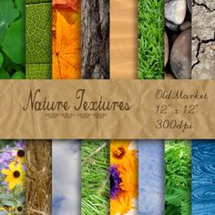 Nature Textures  Digital Paper Pack  16 Designs  12in by OldMarket