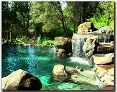 If I ever win the lottery I'm getting a natural looking pool like this.