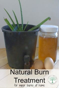 Minor burns from cooking, starting a fire, grilling and baking CAN be treatable at home. Learn about some natural treatments. The Homesteading Hippy via @homesteadhippy