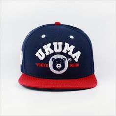 151f07461a3 31 Best snapback images
