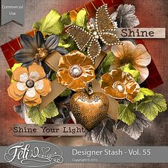 Designer Stash Vol. 55 - CU by Feli Designs