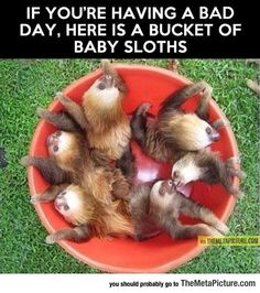Just In Case Of Bad Day