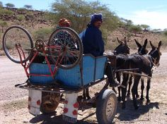 Donkeycart with bicycle - African Art Paintings, The Donkey, African Animals, Fun Activities, Travelling, Transportation, Street Art, Beautiful Pictures, Wildlife