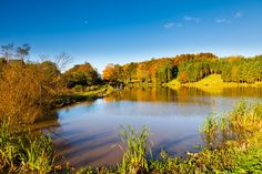 Autumn Waterside and Woodland getaways at Forbes of Kingennie Country Resort