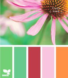 design seeds flora hues