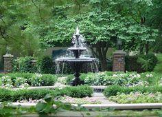Water In The Garden