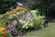 Old Truck loaded down with flowers.