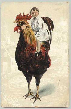 Vintage Postcard - Animal chicken